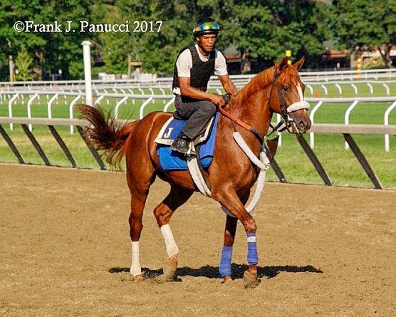 Killala Bay (J.Jerkens)