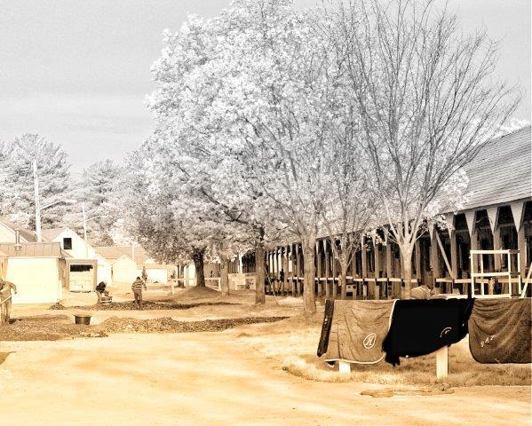 Inflared Barn (Todd Pletcher)